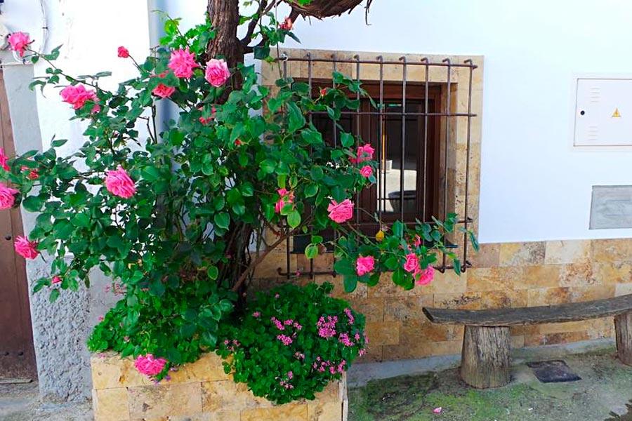 casa-rural-fuente-gusarapos-11